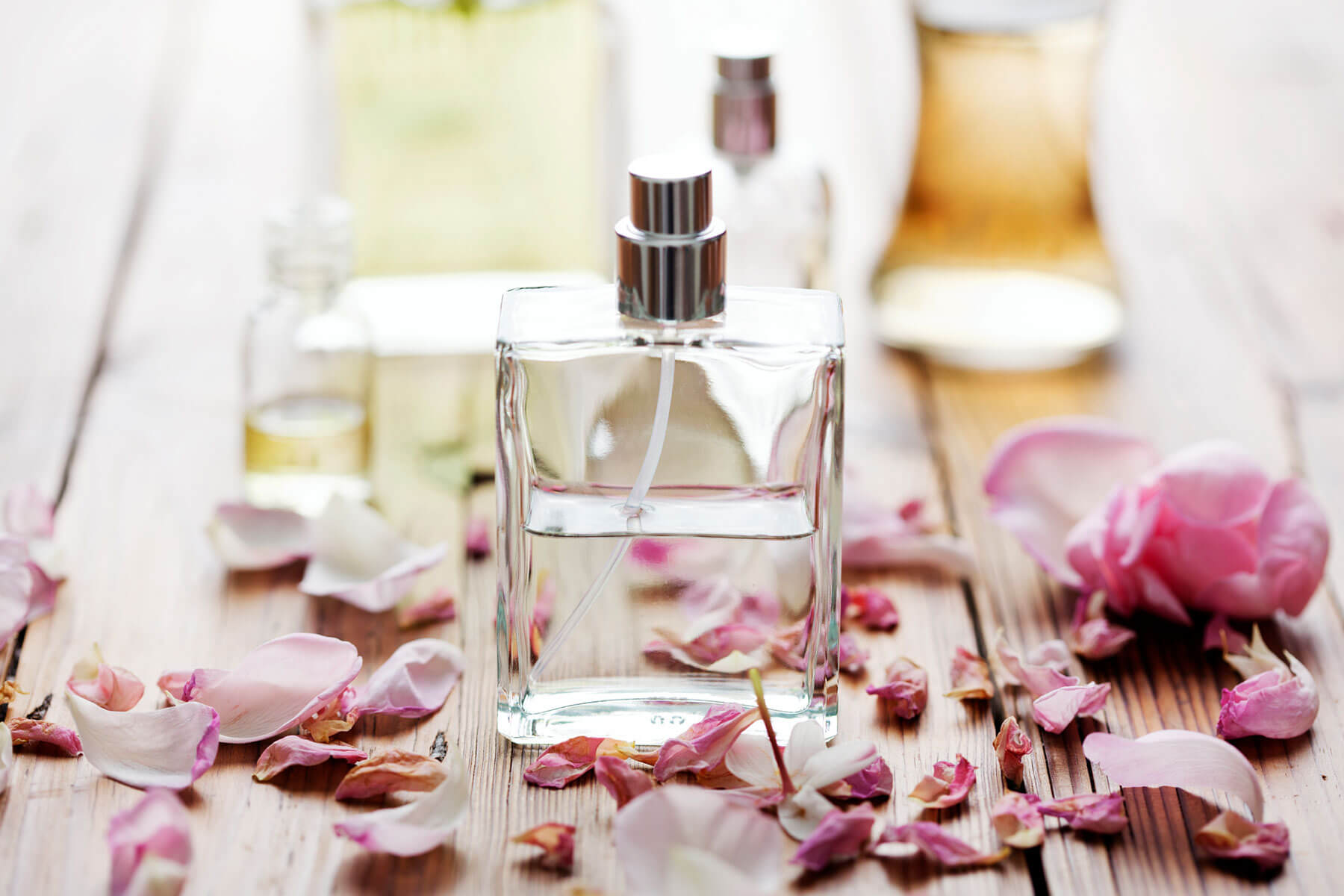How to Optimise a Fragrance Launch Using Data Insights